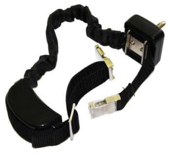 Dog Walking Training Collar Vibration Shock Rechargeable NEW