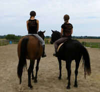 Horse Back Riding Lessons, Private and Group
