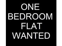 Wanted flat or studio BRIDGEND