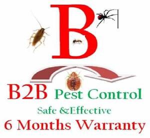 B2B Pest control Price from $79 with 6 Months warranty* Strathfield Strathfield Area Preview