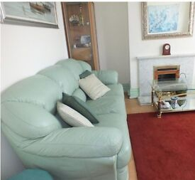 Leather sofas (mint green)