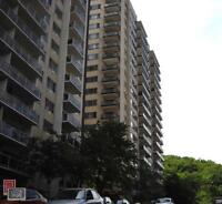 A large and very bright 1 bedroom apartment (3 1/2) for one full