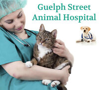 Excellent Mobile Veterinary Clinic in Georgetown Ontario
