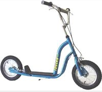 Looking for two scooters like the picture