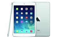 iPad mini 2 wifi and 3G 16GB