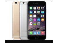 Apple iPhone 6 Plus  Factory Unlocked   16gb