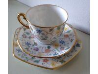 Vintage 1950s Hand Painted Bone China Tea Cup Trio by Thomas of Bavaria