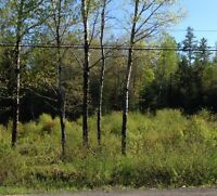 2 ACRE LOT FOR SALE IN WELSFORD 15000 OBO