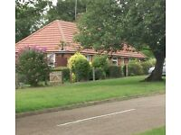 I bed bungalow.. Southwell. Home swap only.