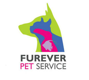 Pet Sitting, Dog Walking and Pet taxi available - KW area Kitchener / Waterloo Kitchener Area image 4