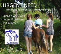 URGENT summer volunteers needed for horses & children