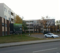 2bdrm Apt. Suites Leduc Rent now pay no rent for May