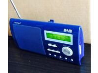 Intempo portable DAB radio