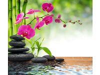 Chinese healing hands full body massage