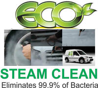 Mobile ECO Auto Detailing at your Door $78.00