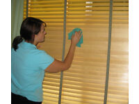 Professional,Cleaning Lady,Perfect,Domestic Cleaner,House Cleaner,End of Tenancy Cleaning,Cleaner