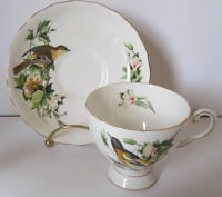 Royal Tuscan Fine China Footed Cup and Saucer Audubon Birds Peterborough Peterborough Area Preview