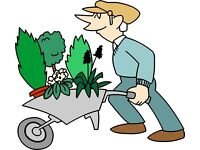Good Man Tidy Gardening services ( Autumn Clearances )