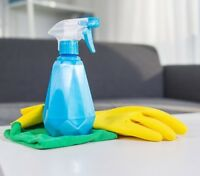 Housekeeper/Cleaning Service
