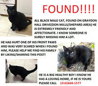 FOUND ALL BLACK MALE CAT IN THE DON MILLS/SHEPARD AREA