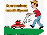 cheap grass cutting service