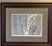 Robert Bateman Numbered Print - Downey Woodpecker on Birch