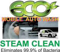 WE COME TO YOU AUTO DETAILING elimate ODOR & BACTERIA
