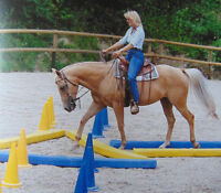 Riding lessons and more