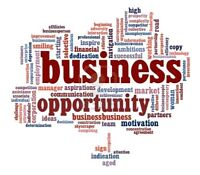 Business Opportunities Wanted!