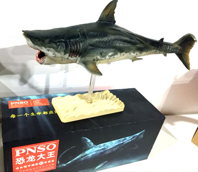 Megaladon Sharks Toys For Boys : Pnso megalodon prehistoric sharks model toy scientific art