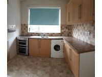 REDUCED 2 Bed Semi Detached House in South Pelaw are to rent £500 pcm