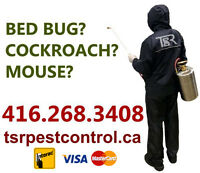 MOUSE? RAT? COCKROACH? BED BUG? PEST CONTROL 416.268.3408 35%OFF