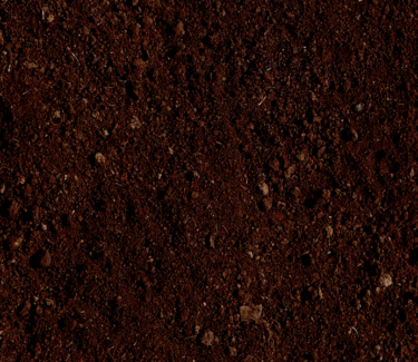 Wanted: WANTED: FREE CLEAN SOIL