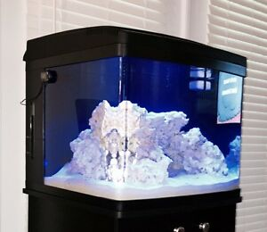 Coralife 29G Biocube with stand