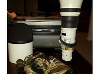 Canon EF 800mm f5.6 L IS USM lens
