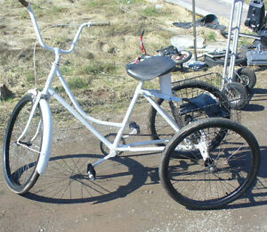 I'm looking a three wheeled bicycle /tricycle for a aduly