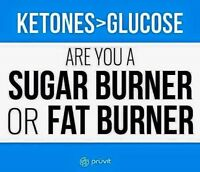 Ketones in your body in under hour burn fat not sugar