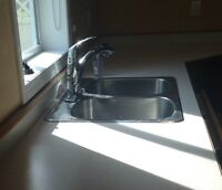 Double bowl sink incl. faucet and garburator. $85