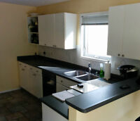 Kitchen Cabinets for sale (full kitchen)
