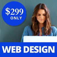 $299 for Extremely Professional Website. Mobile version included