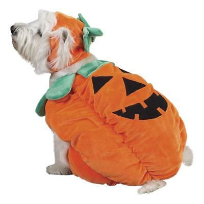 Zack & Zoey PUMPKIN POOCH Dog Halloween Costume XS - XL](Pumpkin Dog Costumes)