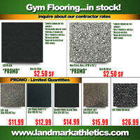 Gym Fitness Rubber Flooring/Equipment - Home Gym and Facilities