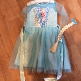 Frozen dress and clip on hair