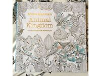Adult colouring book animal kingdom