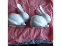 Cotton wool bunnies