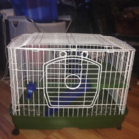 Cage for Rabbit or Guinea Pig