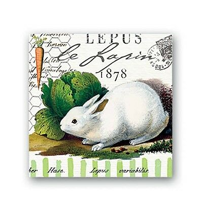Michel Design Works Bunnies Lapin 20 Paper Cocktail Napkins NEW