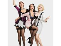 Exceptional female singer wanted for close harmony function trio - LONDON