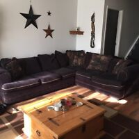 Room for rent $390
