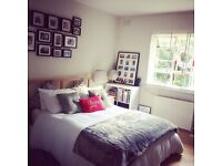 Sunny and spacious double bedroom to rent in East Finchley